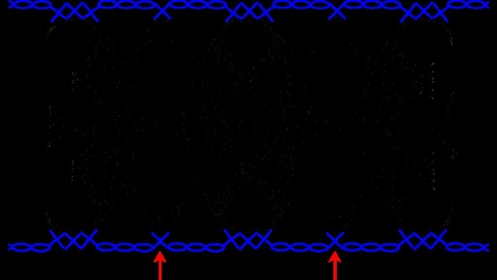 IJsblauw truitje - guimpepatroon