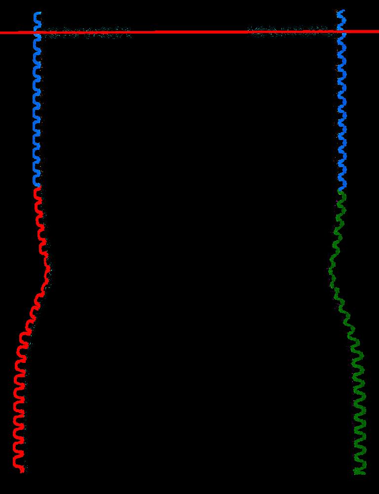 Guimpe - Witte trui - achterpand