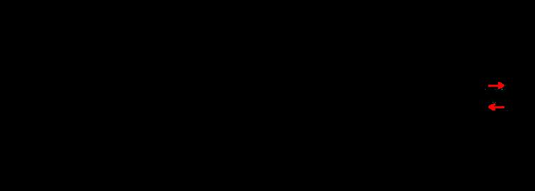 Guimpe - Witte trui - middenvoor